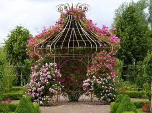 Купольная беседка с розовыми цветами
