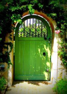 Дверь зелёного цвета